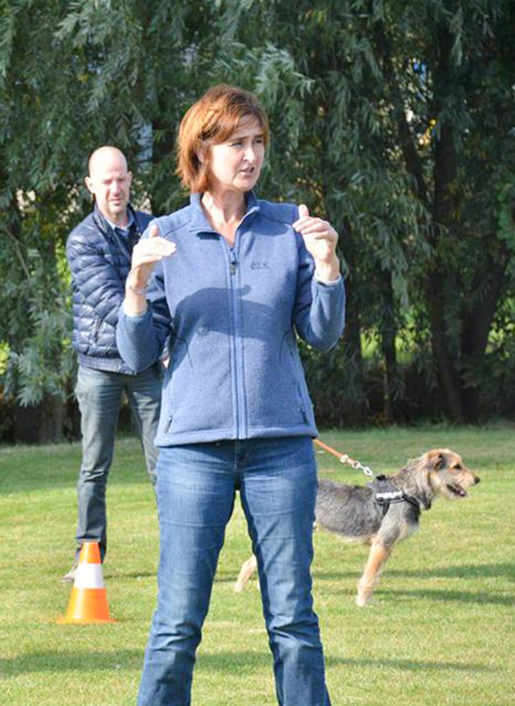 Hondenschool De wijze hond avelgem